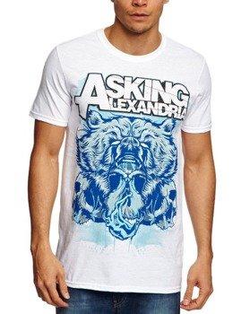 koszulka ASKING ALEXANDRIA - BEAR SKULL