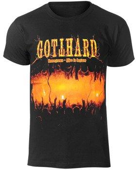 koszulka GOTTHARD - HOMMEGROWN