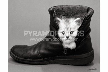 plakat KEITH KIMBERLIN - KITTEN IN A BOOT