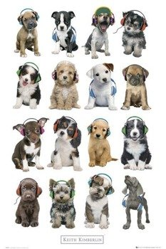 plakat KEITH KIMBERLIN - PUPPIES HEADPHONES