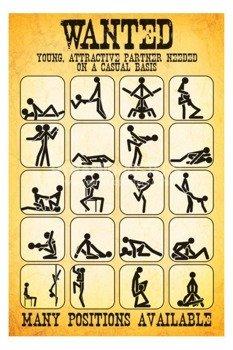 plakat PARTNERS WANTED - SEX