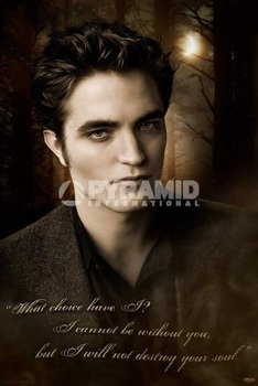 plakat ZMIERZCH - NEW MOON (EDWARD QUOTE)