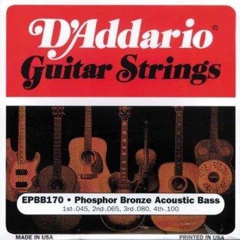 struny do gitary basowej akustycznej D'ADDARIO EPBB170 /045-100/