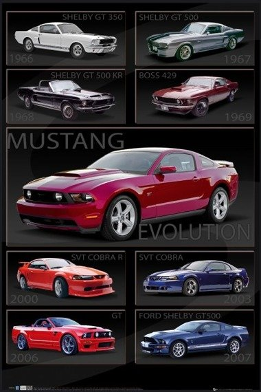 plakat FORD SHELBY - MUSTANG EVOLUTION