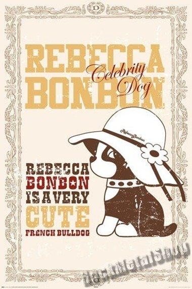 plakat REBECA BONBON - CELEBRITY DOG