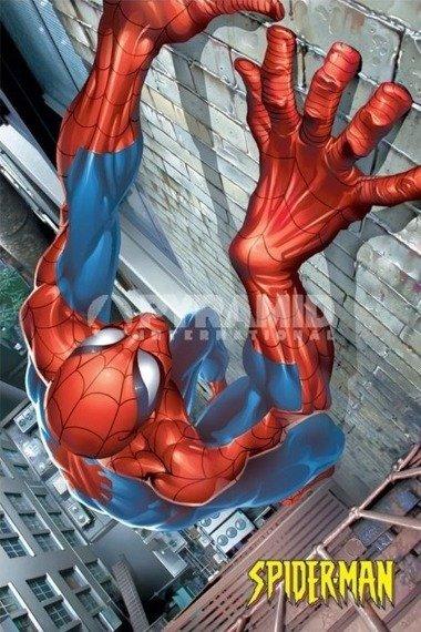 plakat SPIDER-MAN - (CLIMBING)