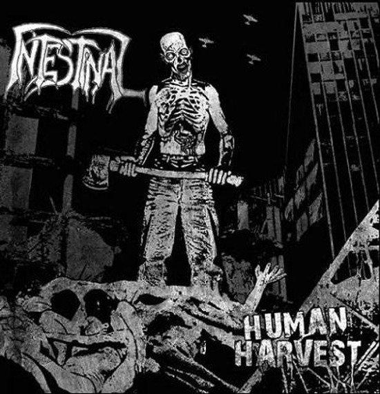 płyta CD: INTESTINAL - HUMAN HARVEST