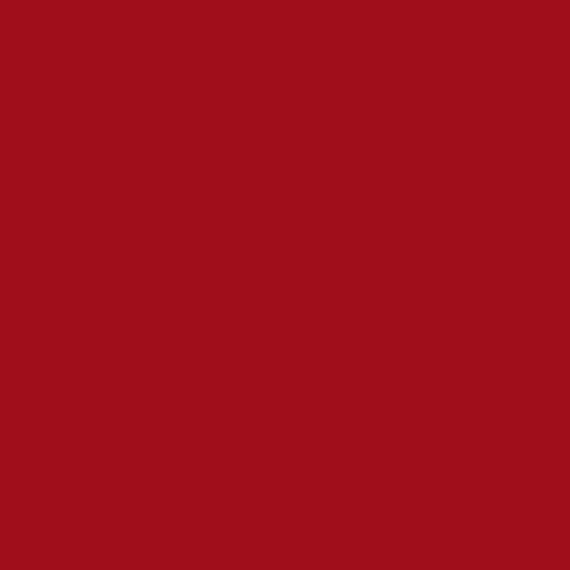 szminka: KRWISTA CZERWIEŃ / MATTE BLOOD RED / matowa